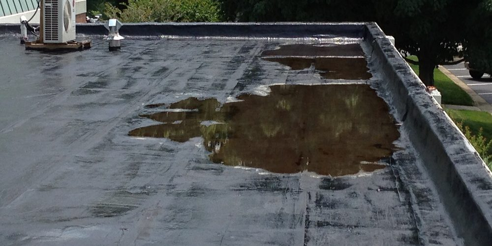 flat roof puddles and standing water